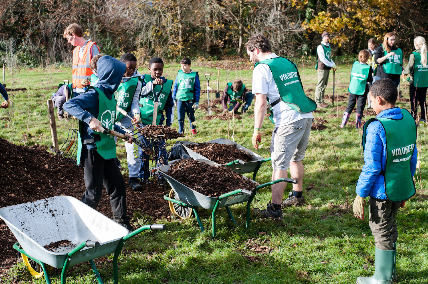 Trees for Cities Mass Planting Weekend funded by The Naturesave Trust