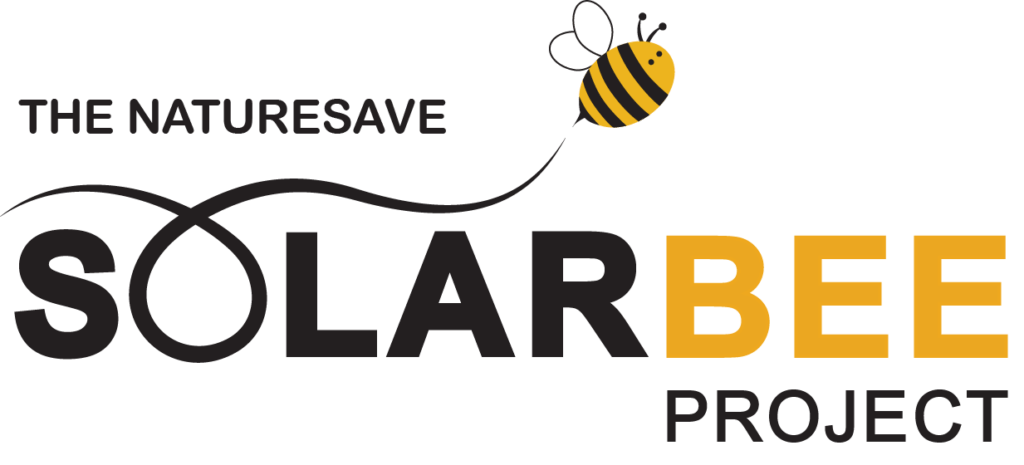 The solar Bee Project Logo