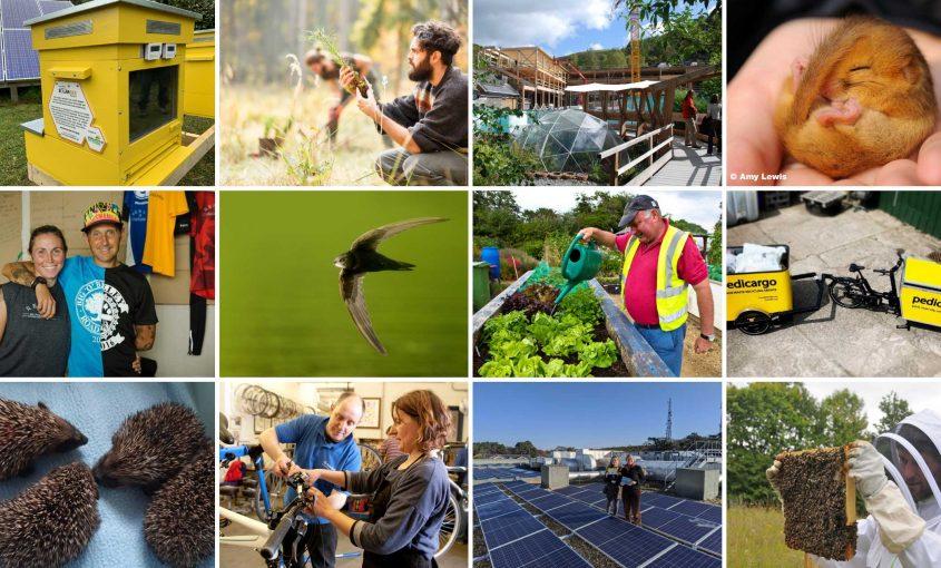 Naturesave Insurance celebrates milestone of £1 million donated to the Naturesave Trust